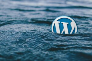 WordPress logo in water