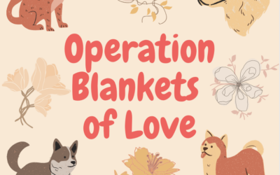Company Spotlight #4: Operation Blankets of Love